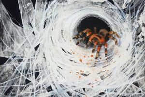 identity thief, tarantula, orange and black tarantula, hacked, identity, thief, spider, spider painting, tarantula painting