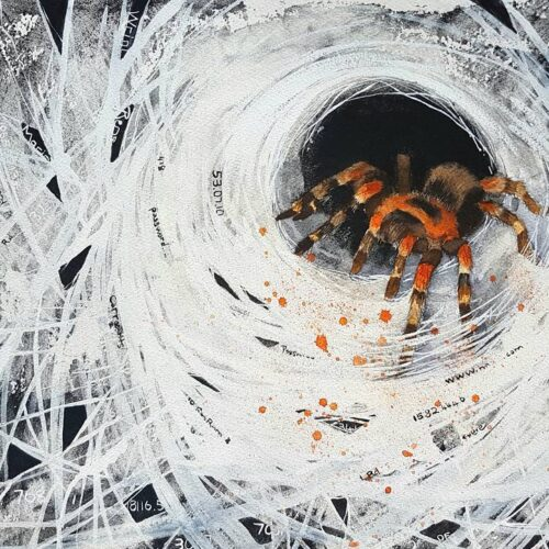 identity thief, tarantula, orange and black tarantula, hacked, identity, thief, spider, spider painting, tarantula painting