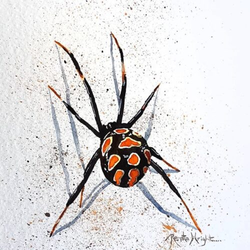 spider, spider art, spider painting, red widow spider, red widow, red and black spider, spider art, watercolor spider