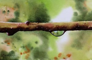 droplet, water droplet, water droplet painting, droplet painting, garden painting