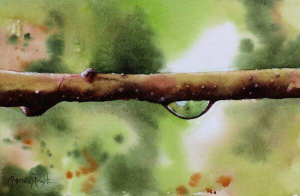 droplet, water droplet, water droplet painting, droplet painting, garden painting