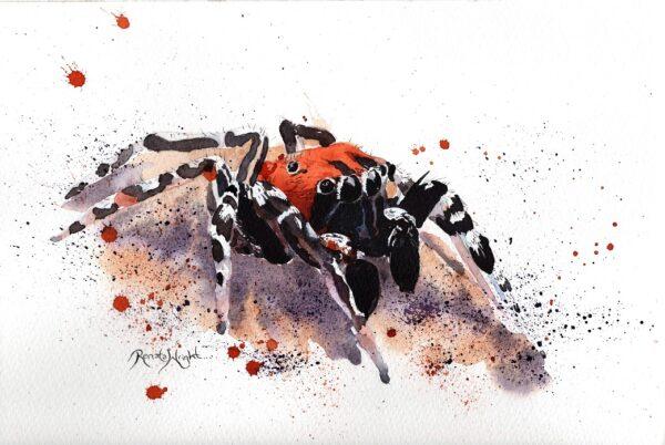 spider art, watercolor spider, watercolour spider, spider painting, arachnid artist, renata wright, renata wright art