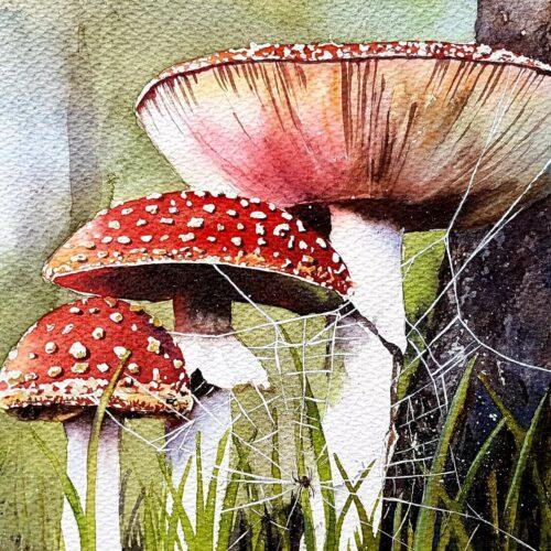 mushrooms, mushroom painting, mushrooms and spider web, spider web, spider web painting, spider web with spider, web and spider, web spider mushrooms, watercolour painting, watercolor painting, watercolor artist,